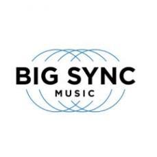 Big Sync Logo
